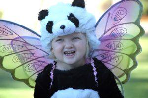 fairy-panda-bear-costume