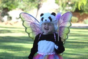 fairy-panda-bear-with-wand