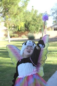 halloween-fairy-panda-bear